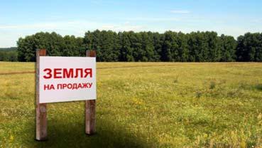 земля и земельный участок