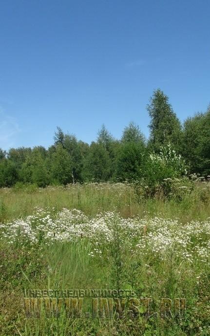 использование земель сельхозназначения: